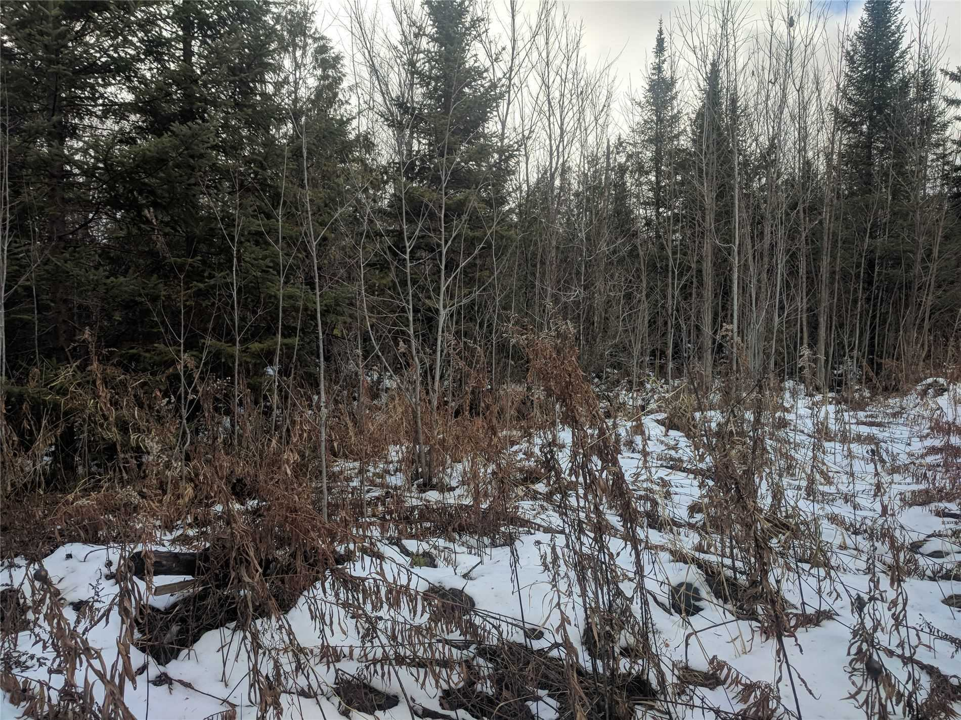 Vacant Land house for sale at Lot 33 5th Concession Rd Uxbridge Ontario